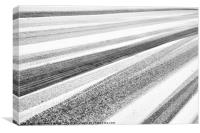 Snow Lines, Canvas Print