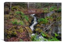 Rusty bridge in Glen Affric, Canvas Print
