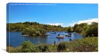 Bandry Bay Marina, Canvas Print