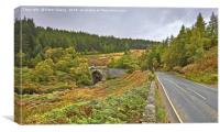 Road Bridge Over Easter Fearn Burn, Canvas Print