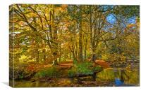 Autumn, River Dove , Peak District, Canvas Print