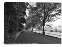 Black & White Path, Canvas Print