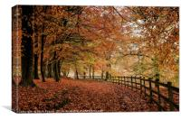 Ryburn in Autumn, Canvas Print