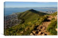 Lions Head, Canvas Print