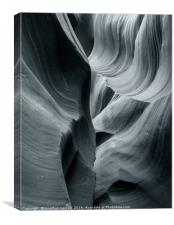 Shadow and Light , Canvas Print