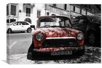 Maletese Mini, Canvas Print