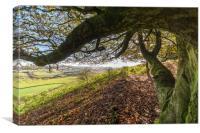 Amazing views over Wiltshire, Canvas Print