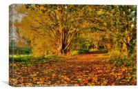 Barnwell Park, Canvas Print