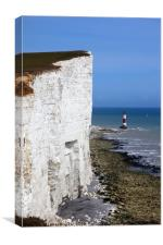 Chalk Headlands on the Sussex Coast , Canvas Print