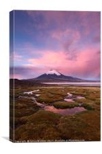 Parinacota Volcano Lauca National Park Chile, Canvas Print