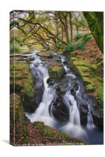 Waterfall at Shipley Bridge, Canvas Print