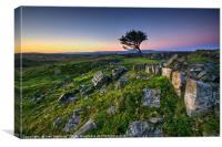 Lone Tree and Limestone Paving Ystradfellte, Canvas Print