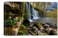 Sgwd Ddwli Isaf Waterfall at Pontneddfechan , Canvas Print