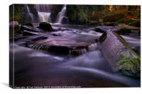 Penllergaer Waterfall, Canvas Print