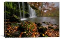 Autumn at Sgwd Ddwli Waterfall , Canvas Print