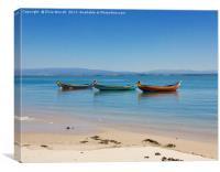 Aveiro Traditional Fishing Boat, Canvas Print