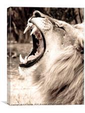 The Lion Roar, Canvas Print