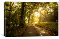 a quiet country lane, Canvas Print
