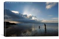 Dog walking on Caswell Bay beach in winter, Canvas Print