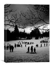 Winter park, Canvas Print