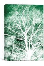 White tree silhouette, Canvas Print