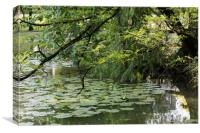 vegetation of the pond in summer, Canvas Print