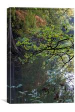 reflection on pond in autumn, Canvas Print