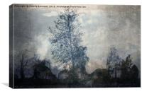 barren tree in the fog , Canvas Print