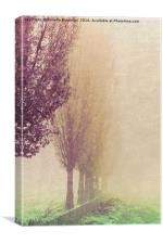 field in the fog, Canvas Print