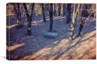 wooden bench in the garden, Canvas Print