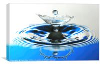 water drop and reflection, Canvas Print
