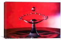 water drop, Canvas Print