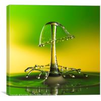 A double water drop collision, Canvas Print
