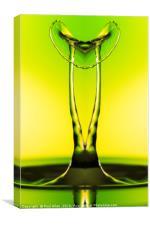 Water drop mirror image, Canvas Print
