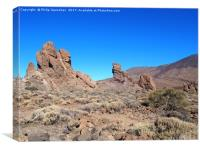 rock formations in teide national park, Canvas Print