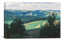 Field in the Carpathians, Canvas Print