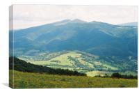 Carpathian landscape with flowers, Canvas Print