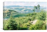 Carpathian landscape, Canvas Print