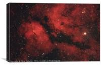 Butterfly nebula in Cygnus constellation, Canvas Print
