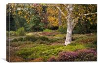 Colours of nature, Canvas Print