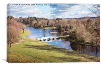 Painshil Park Lake, Canvas Print