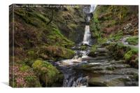 Pistyll Waterfall Wales, Canvas Print