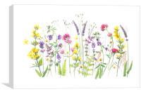 Garden Treasures, Canvas Print