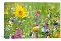 The Flower Meadow, Canvas Print