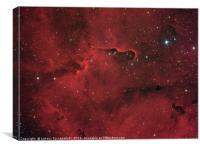 Elephant Trunk nebula in constellation Cepheus, Canvas Print