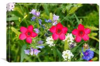 Three red flowers against green floral meadow, Canvas Print