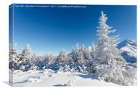 Winter mountain landscape, Tatry Mountains, Canvas Print