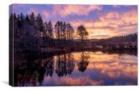 Strathdon Lochan Dawn Reflections, Canvas Print