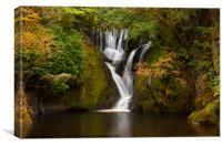Dyfi Furnace Waterfall in early autumn, Canvas Print