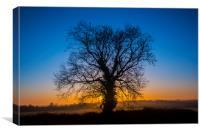 Sunrise Behind Tree, Canvas Print